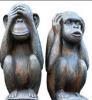 Małpy_do_kalamburu.png