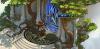 Screenshot_2020-02-24 Elvenar - Zbuduj niezwykłe miasto w świecie fantasy.png